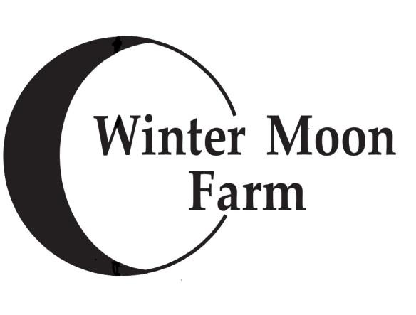 WMF Logo 2014